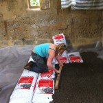 Charlotte lays the clay balls for insulation before we laid the breathable lime crete floor