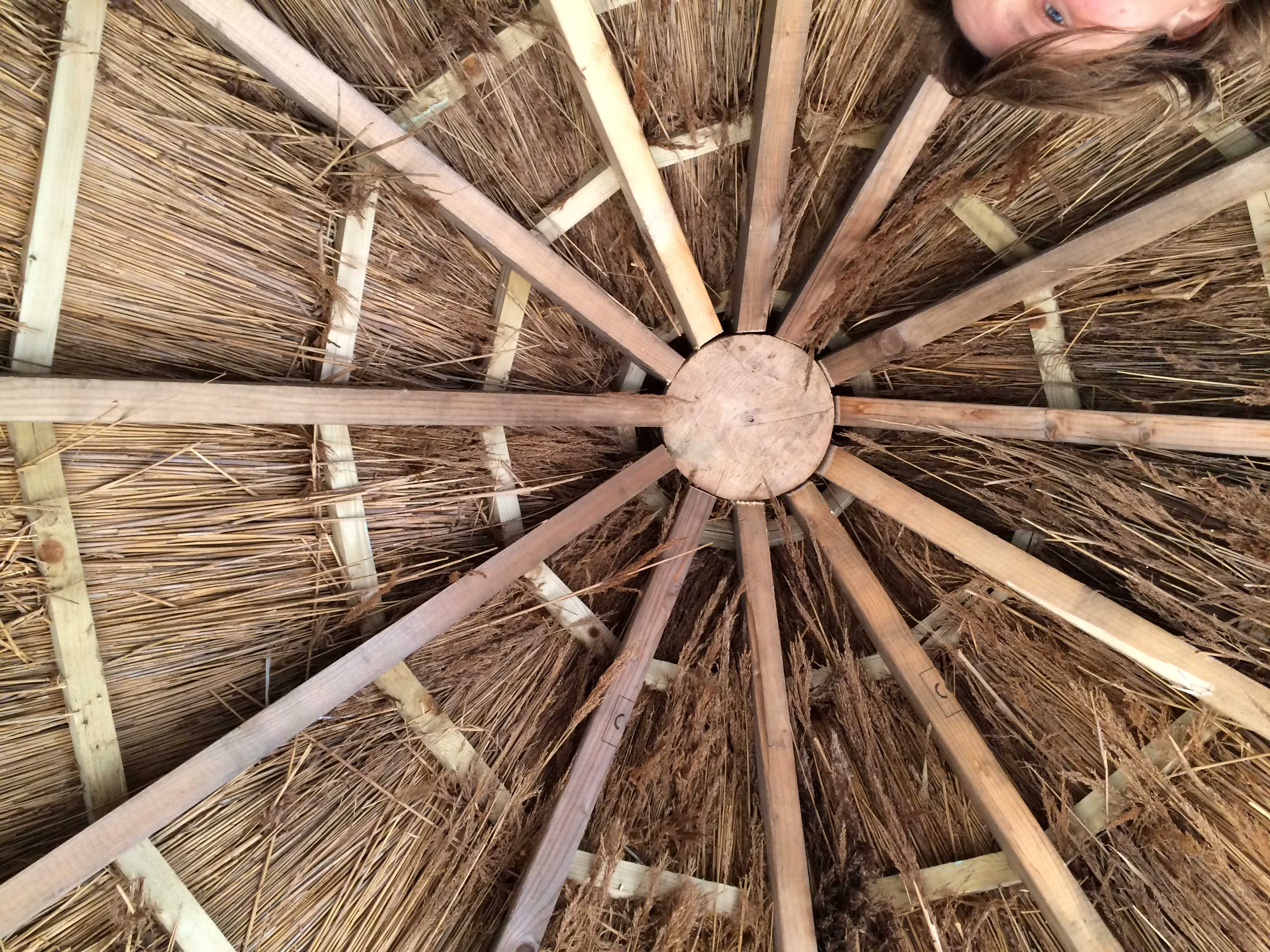 Build An Anglo Saxon Roundhouse In Your School Edwards