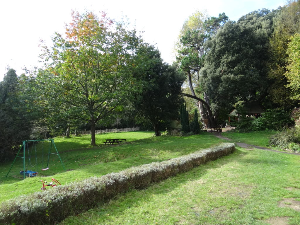 monkton-wyld-photo-grassy-area